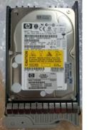 SPS-DRV, HD,73GB/10K 1, DS2300 SCSI